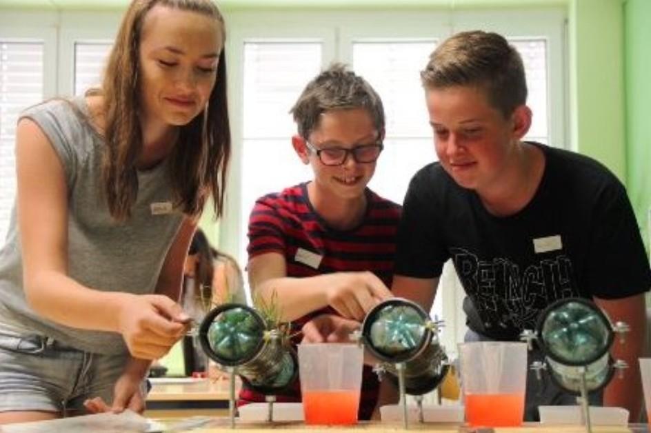 Schüler die gerade ein Bodenexperiment durchführen